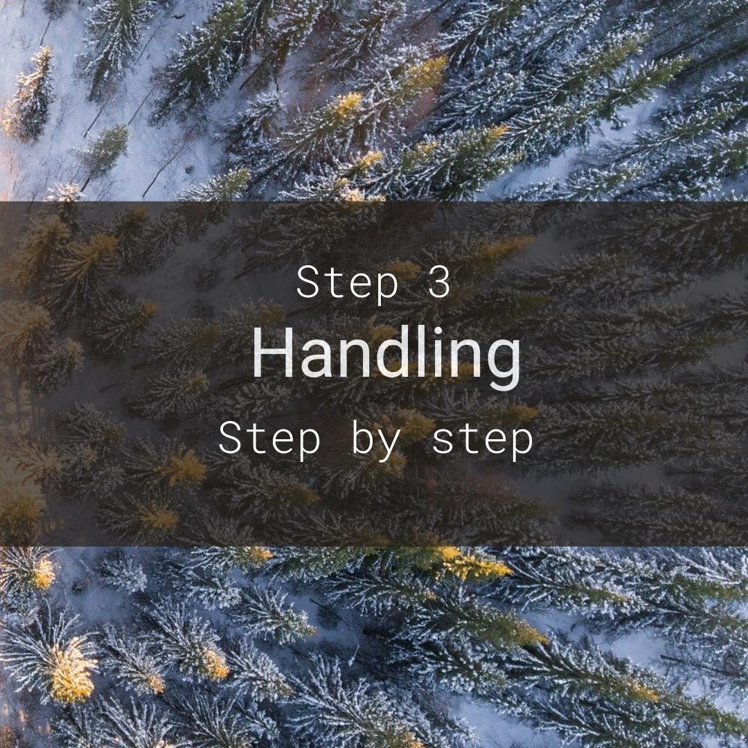 step by step nyny