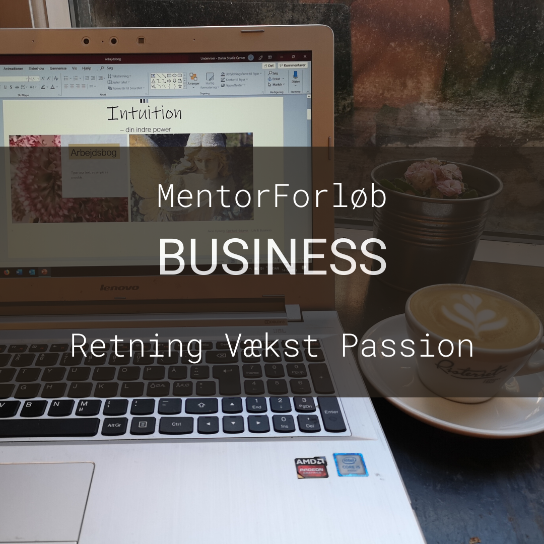 BUSINESS MENTORFORLØB